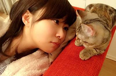 さしこと見つめ合う猫のカン太郎