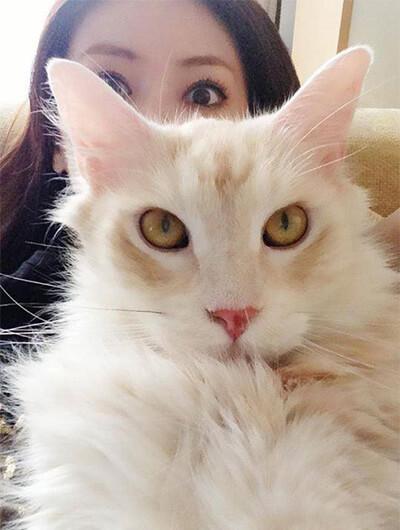 アップで写る北川景子の愛猫