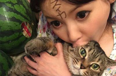 中川翔子と飼い猫のマミタス