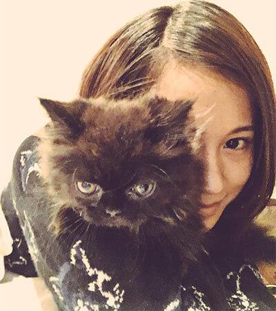 前田敦子の飼い猫ナターシャ