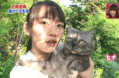 吉岡里帆と飼い猫のヒナ