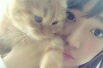 宮脇咲良に抱かれる愛猫のまるちゃん
