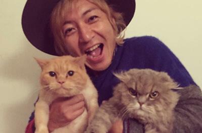 つるの剛士と二匹の飼い猫
