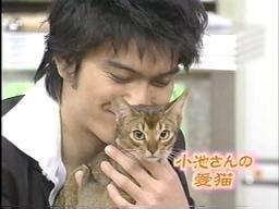 小池栄子の猫を抱く長瀬智也