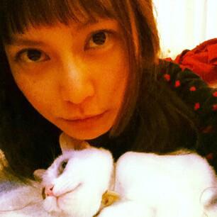 柴咲コウと白猫の愛猫