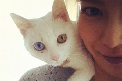 柴咲コウの肩に乗る飼い猫ののえる
